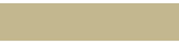 C21 FHE Logo